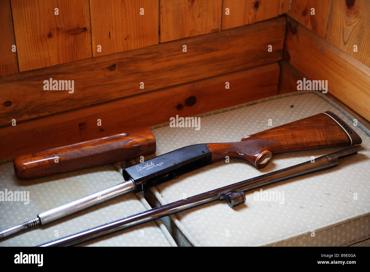 SHOTGUN DISASSEMBLED BEING CLEANED WEATHERBY CENTURION Stock Photo