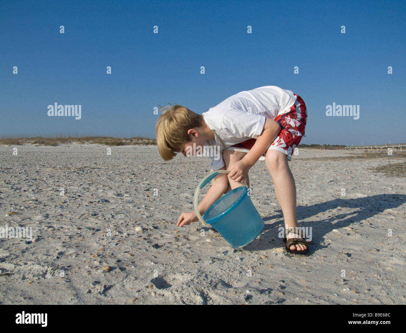 boy on beach with bucked collecting shells - Stock Image