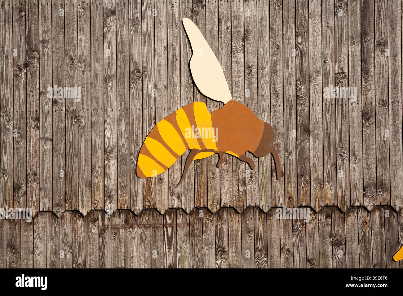 Denmark Zealand Møn island farm bee - Stock Image