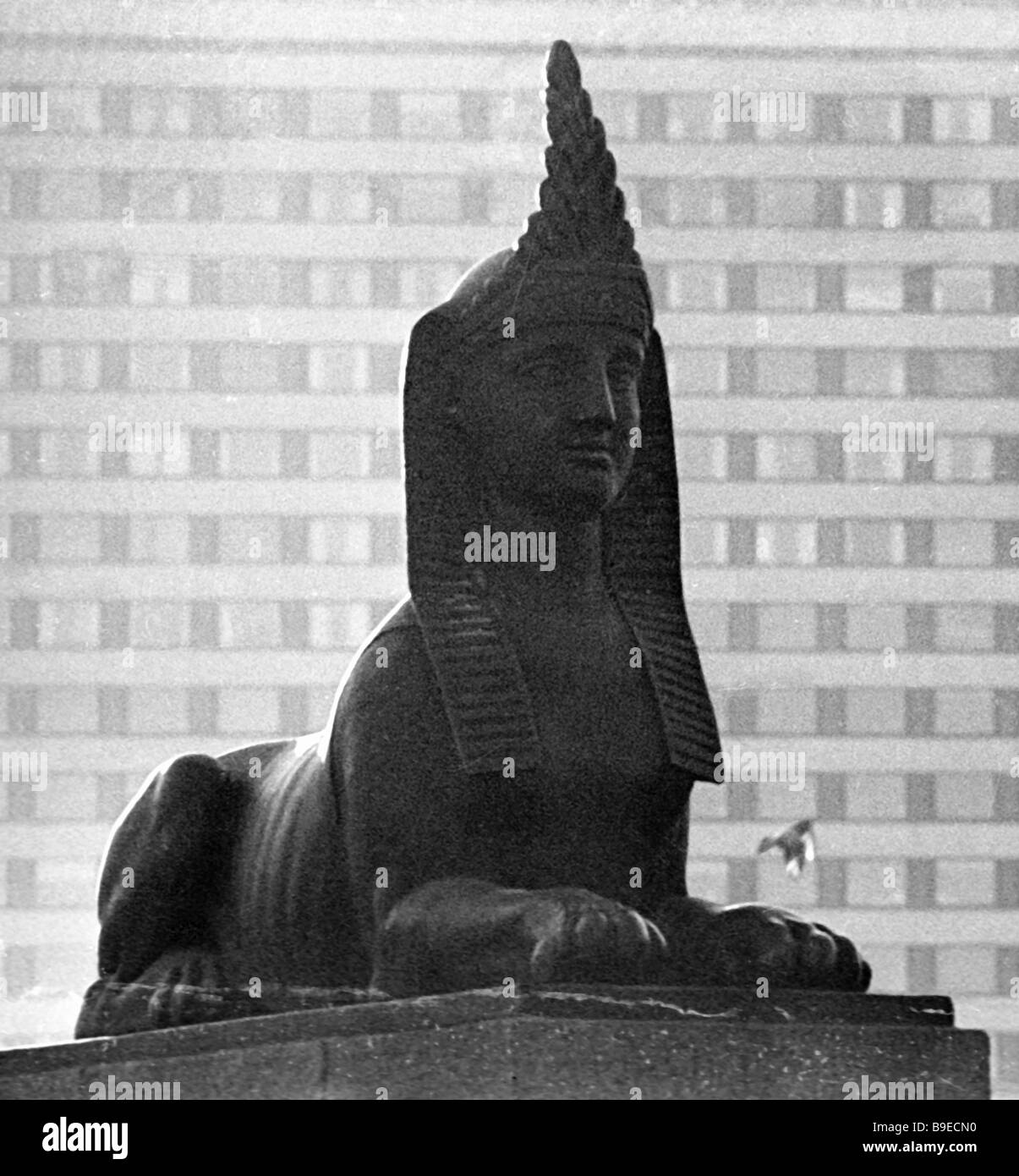 Sphinx at the Arts Academy building - Stock Image