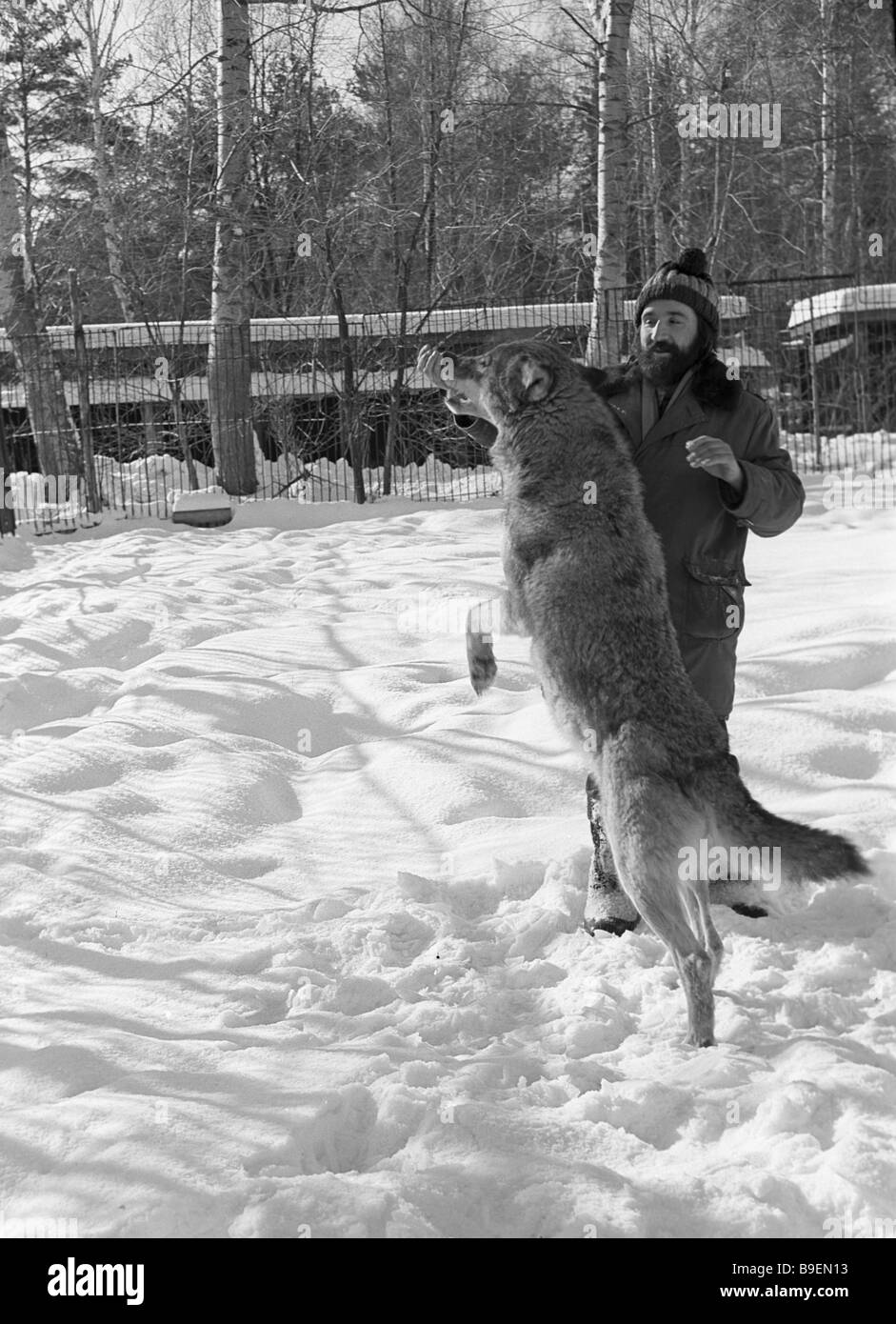 Acting she wolf Roza with trainer Anatoly Kazhdan rehearsing at the Tsentrnauchfilm zoo - Stock Image