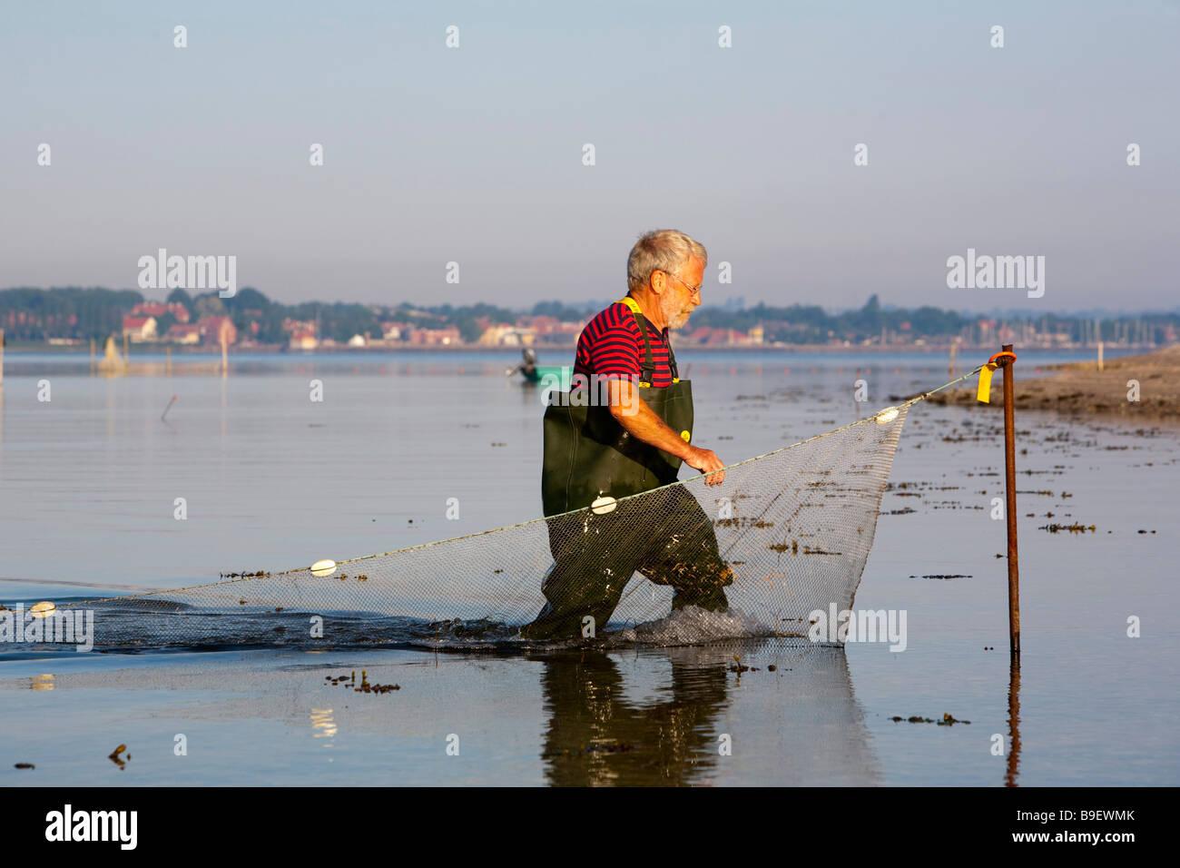 Denmark Funen Ærø island shrimps fisherman - Stock Image