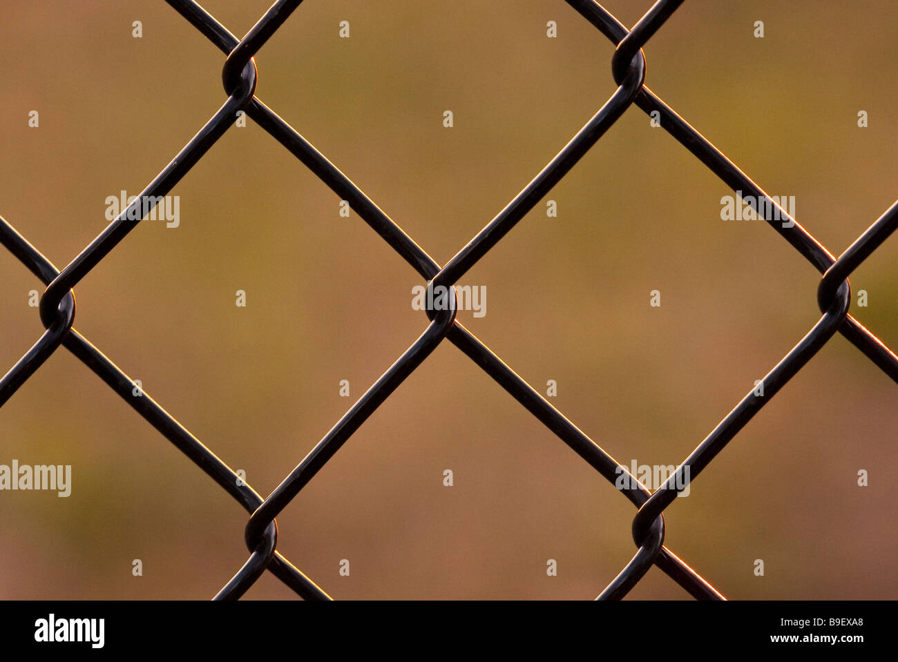 wire fence - Stock Image