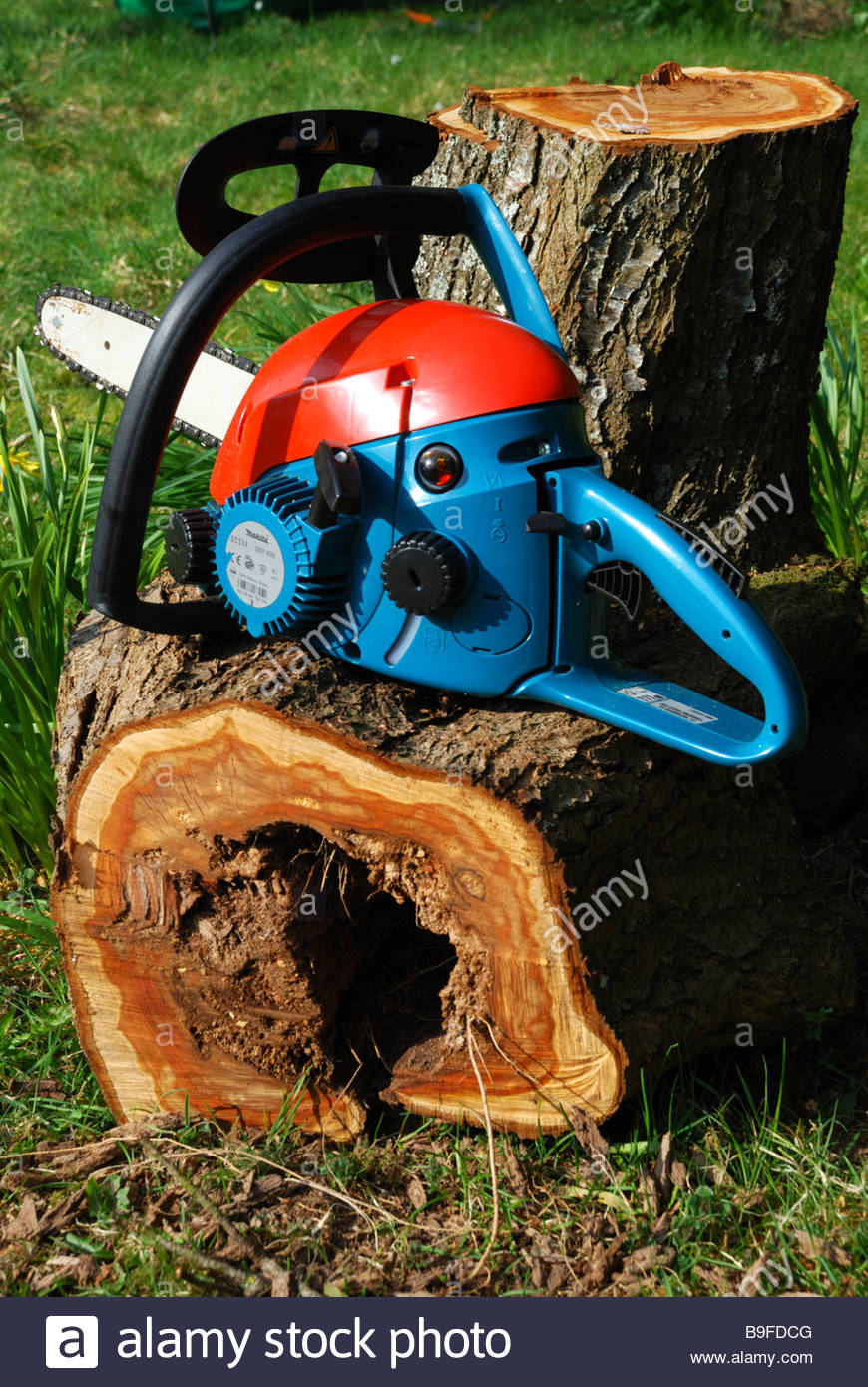 Chainsaw and safety helmet, Dorset, England, UK Stock Photo