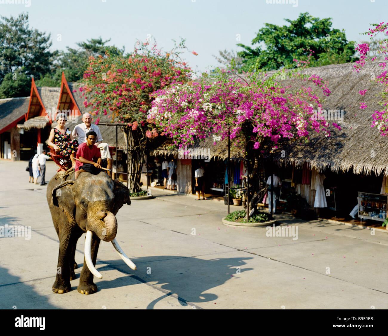 thailand bangkok rose garden stock photo: 23089987 - alamy