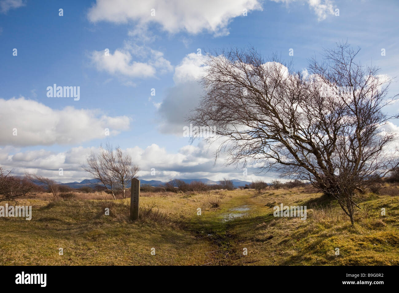 Footpath and waymarker sign on Newborough Warren National Nature Reserve in AONB. Newborough Isle of Anglesey North - Stock Image