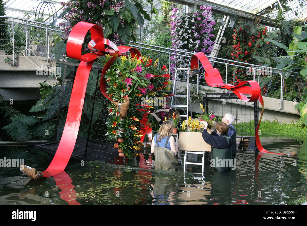 Preparing for the Kew 250th Celebration Exhibition in the Princess of Wales Greenhouse, Royal Botanical Gardens, - Stock Image