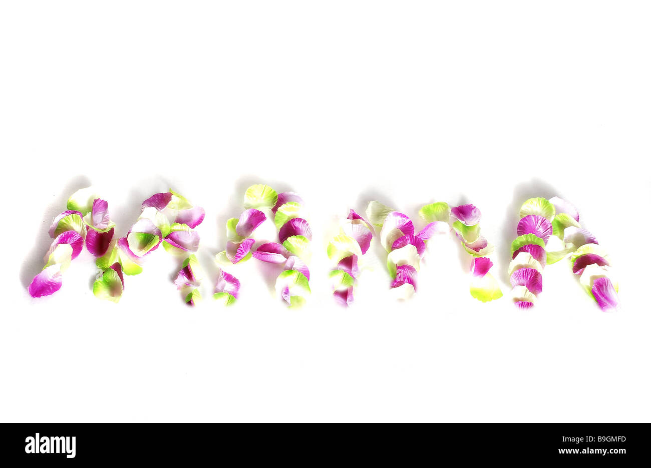 petals stroke mommy bloom leaves differently-colored pink white green symbol mother-day holiday  Leaves blooms petals - Stock Image