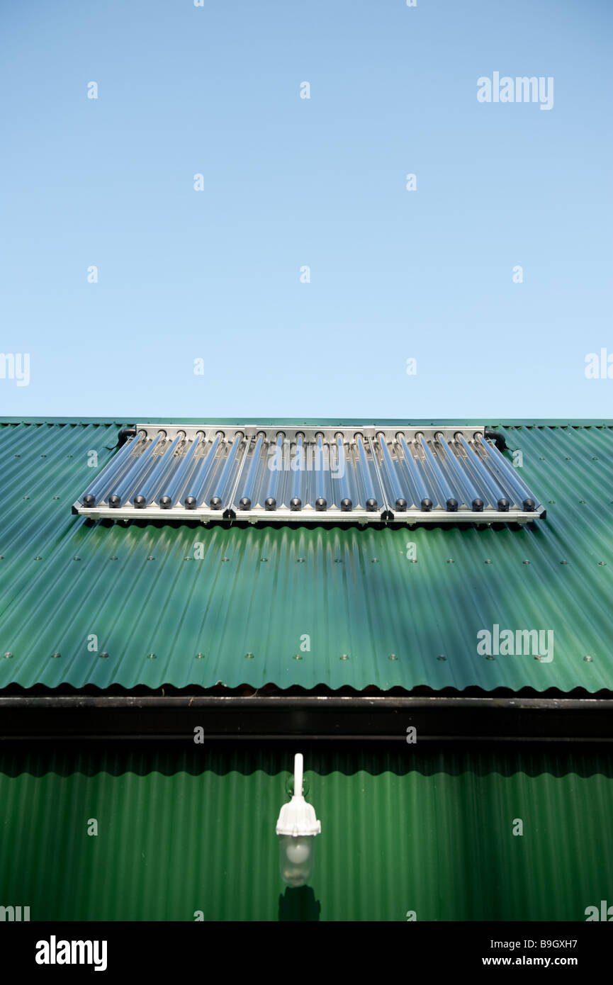 Solar Heating array of tubes on a roof converting sunlight into energy to heat water, UK - Stock Image