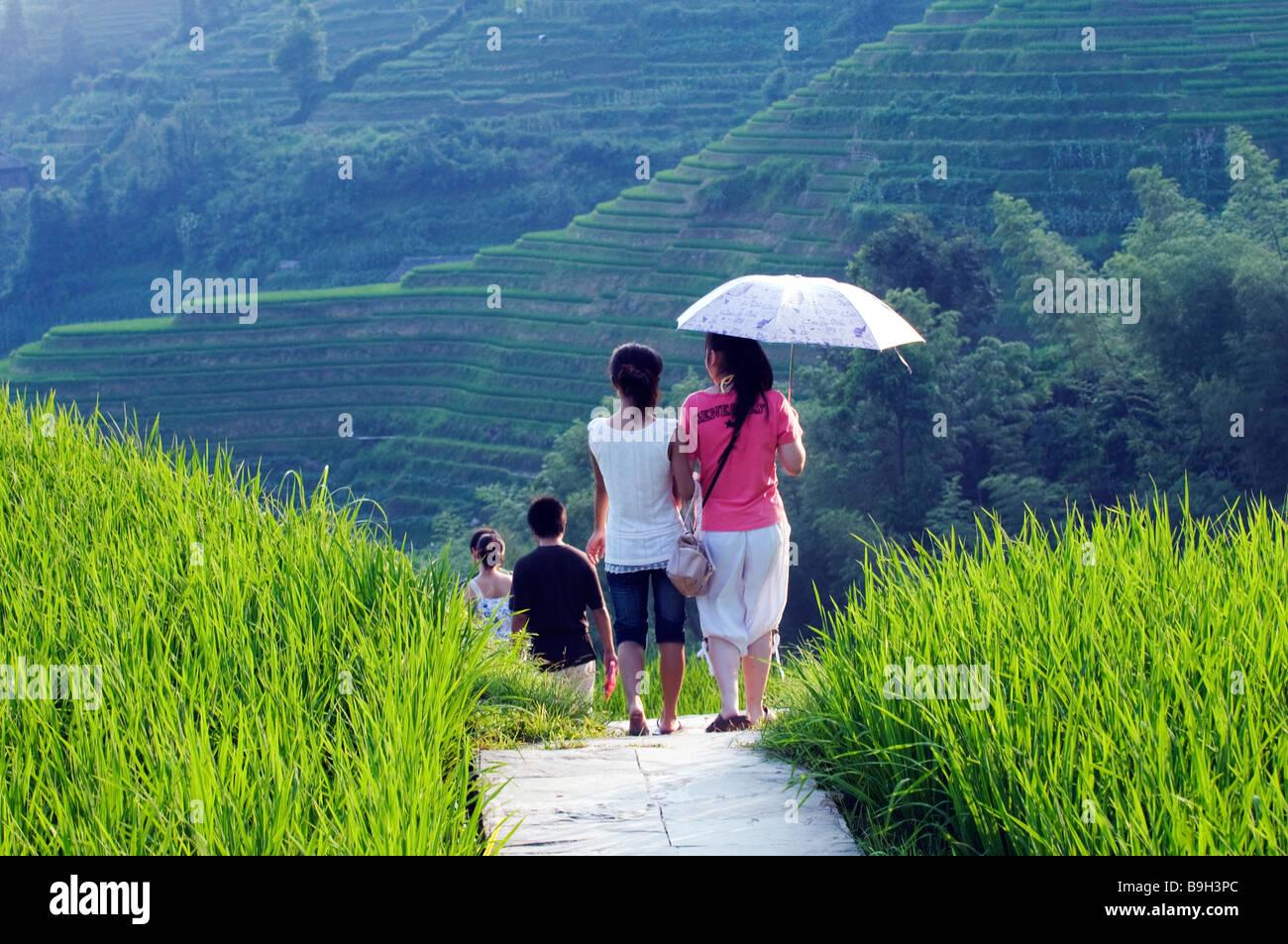 China, Guangxi Province, Longsheng Dragon's Backbone Rice Terraces near Guilin. Tourists walking through the rice Stock Photo