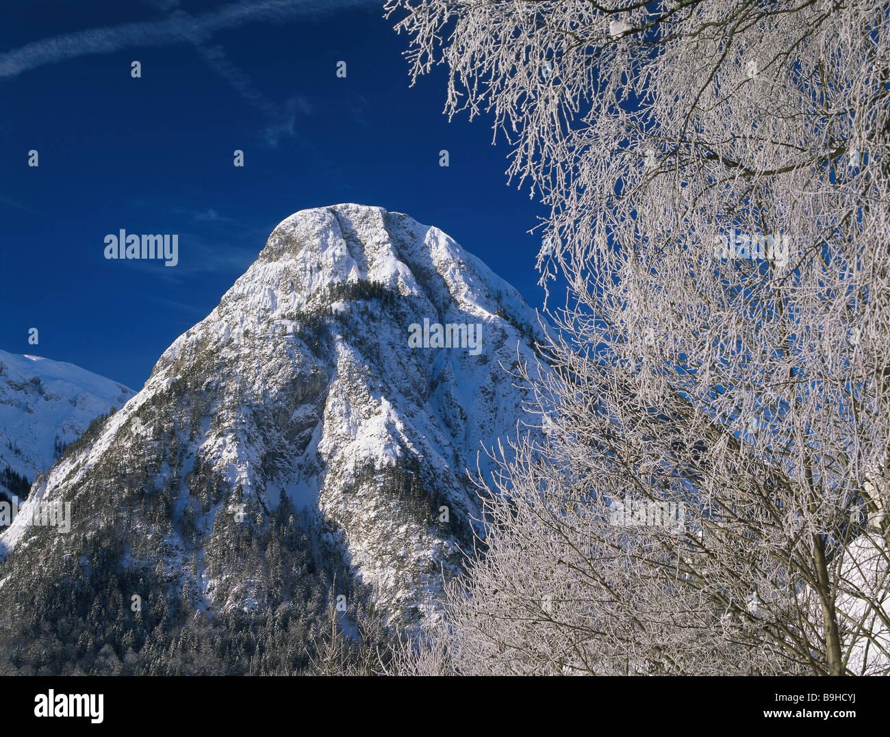 snowed in Austria Tyrol Maurach am achensee Bärenkopf winter North-Tyrol Karwendel-mountains mountain summit - Stock Image
