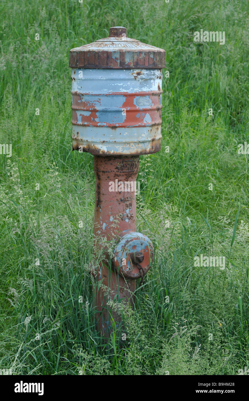 Old weathered hydrant in a meadow of flowering grass Stock Photo