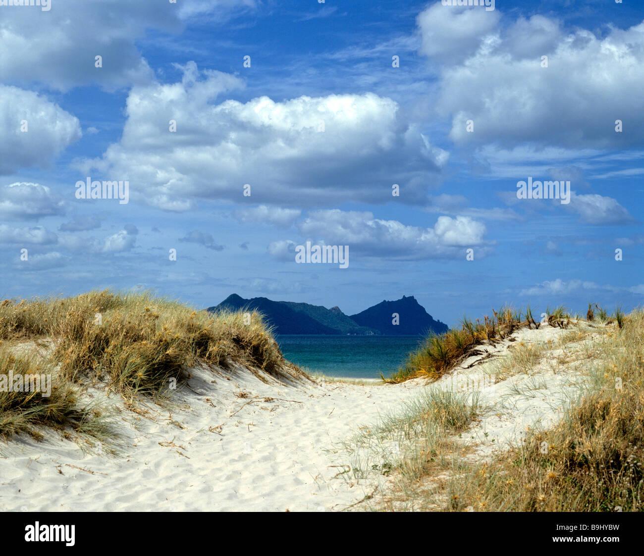 Dunes and ocean, North Island, New Zealand - Stock Image