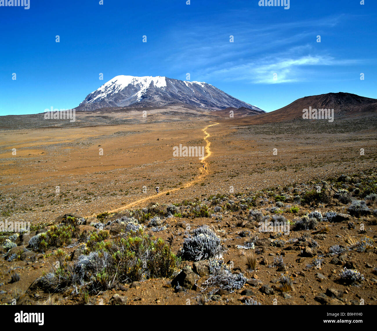 Path to Mount Kilimanjaro, Kilimanjaro National Park, UNESCO World Heritage Site, stratovolcano, Tanzania, East - Stock Image