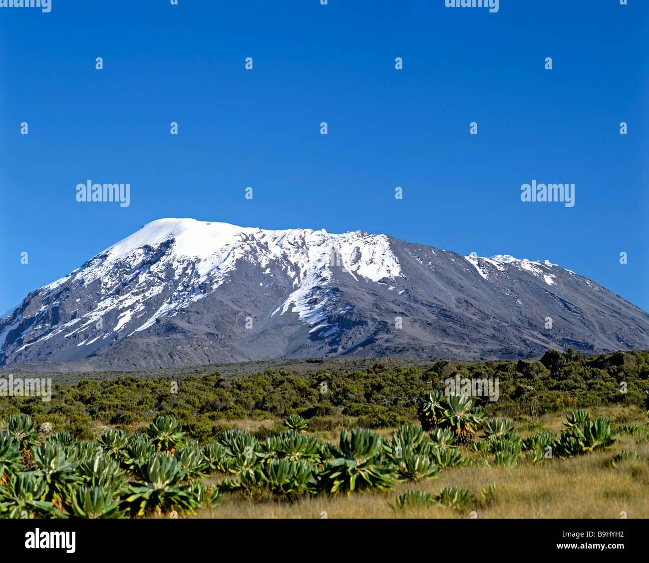 Mount Kilimanjaro, Kilimanjaro National Park, UNESCO World Heritage Site, stratovolcano, Tanzania, East Africa - Stock Image