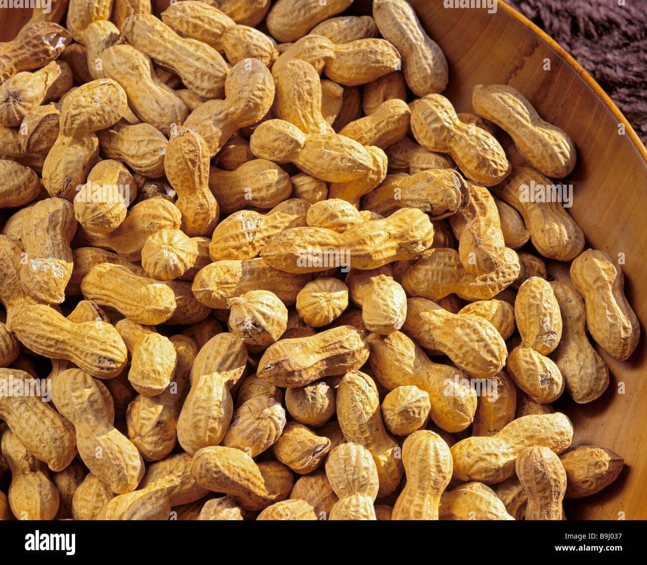 Peanuts (Arachis hypogaea) - Stock Image