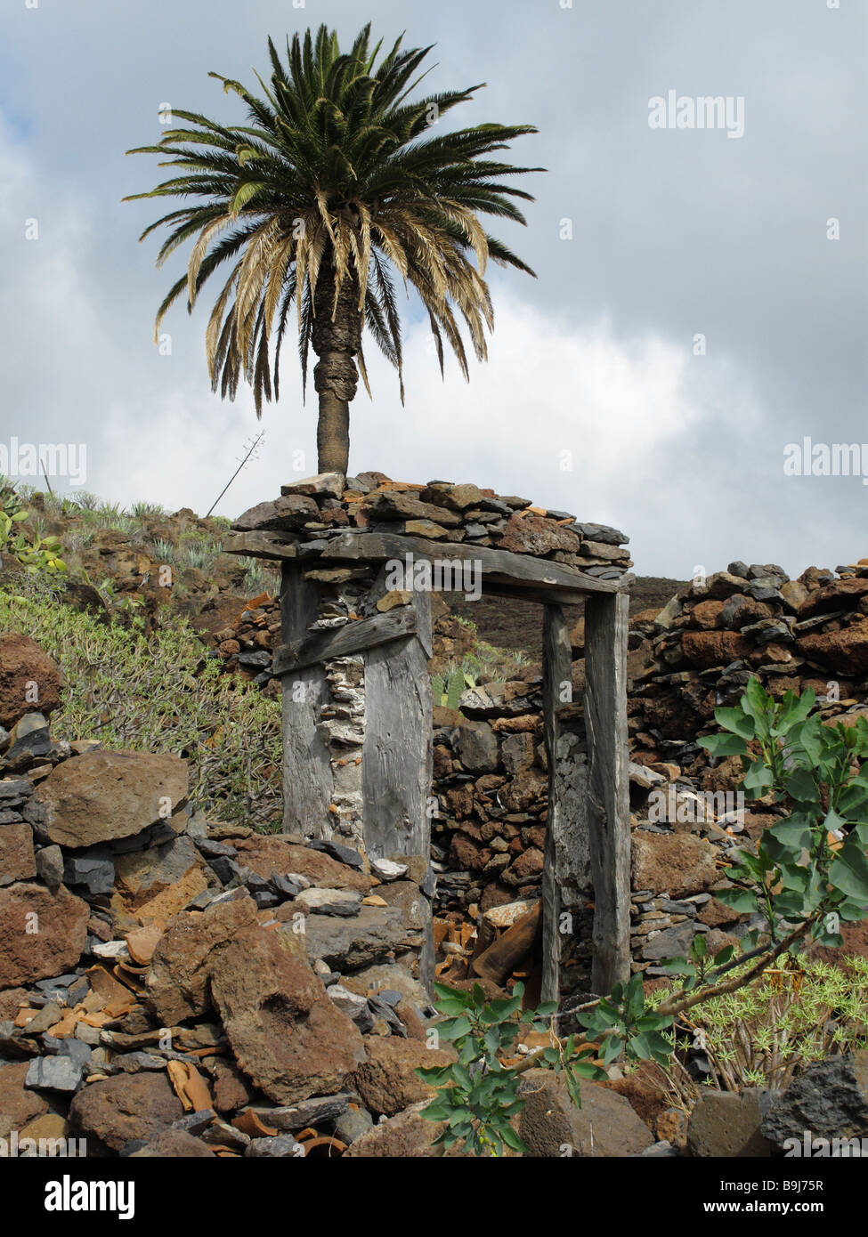 Doorframe of a ruin and a palm tree in Contreras near Playa Santiago, La Gomera, Canary Islands, Spain, Europe - Stock Image