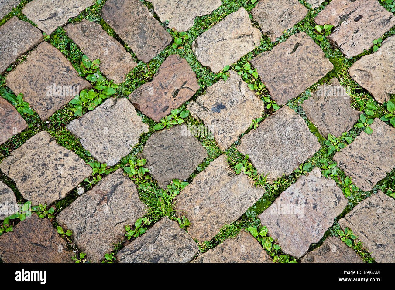 Stones in old street surface Hamelin Germany - Stock Image