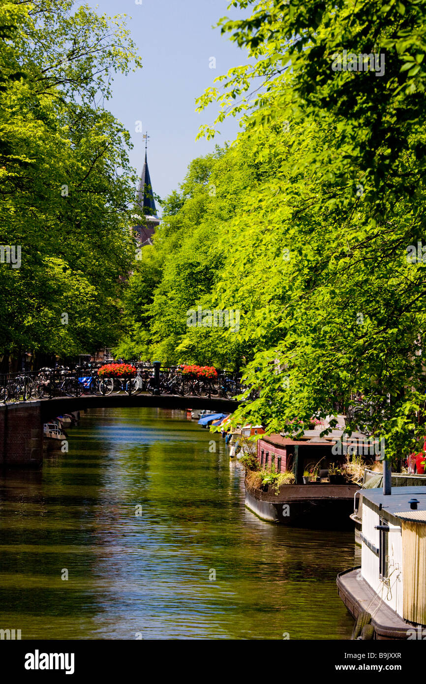looking down a canal in amsterdam in spring Stock Photo