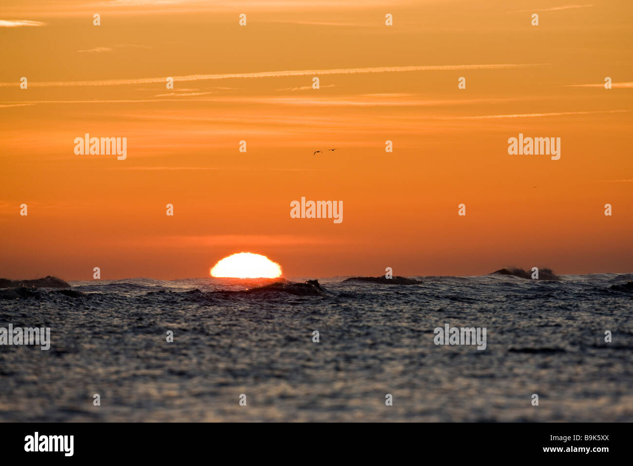 Rising sun appearing flattened due to the effect of atmospheric refraction, Lincolnshire December 2008 - Stock Image