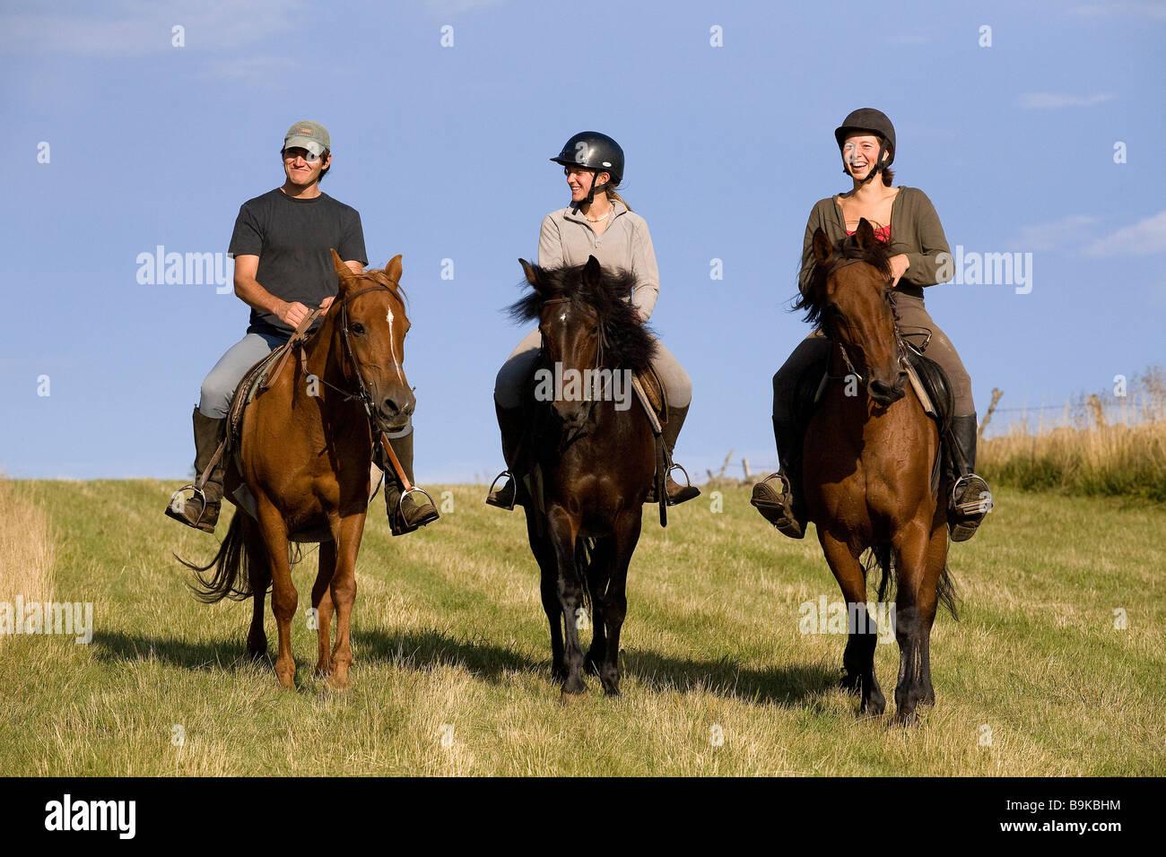 France, Aveyron, Aubrac area, Centre Equestre de l'Aubrac (Aubrac equestrian center, horse riding - Stock Image