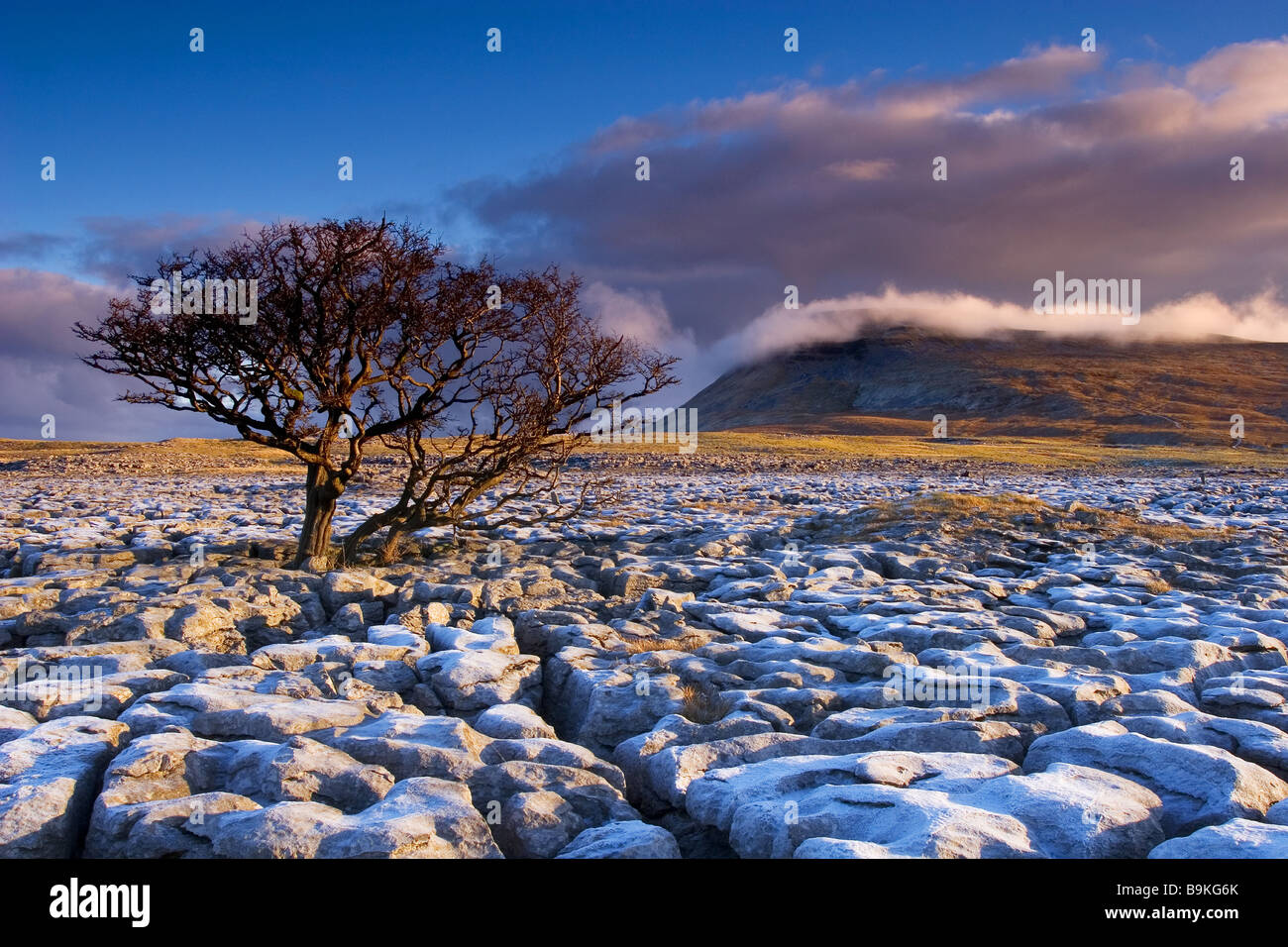 The White Scar limestone pavement and Ingleborough Mountain in the Yorkshire Dales National Park - Stock Image