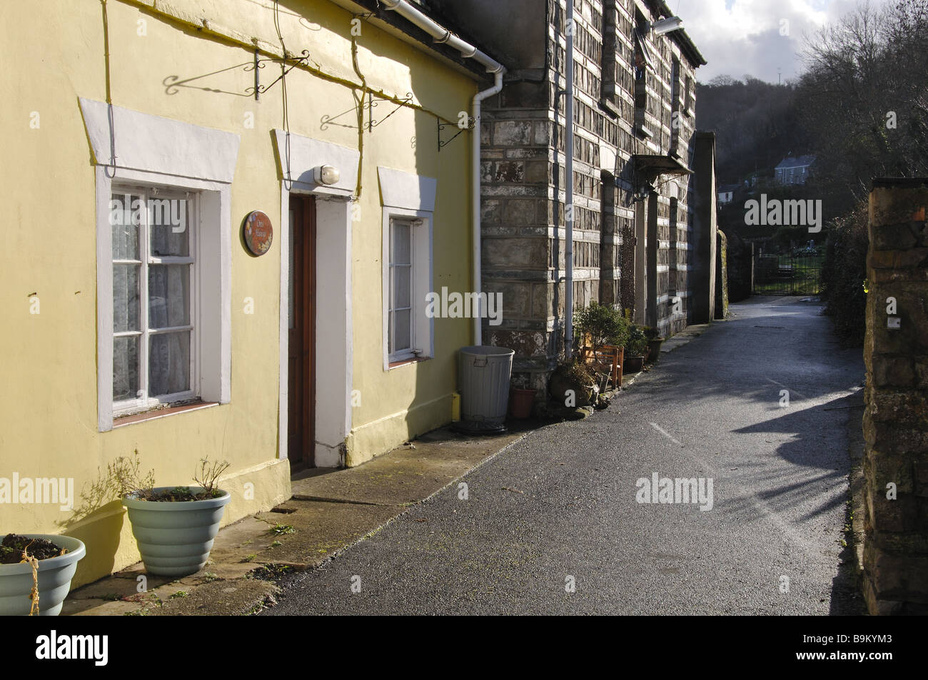 Homes along Church Lane St Dogmaels Pembrokeshire - Stock Image