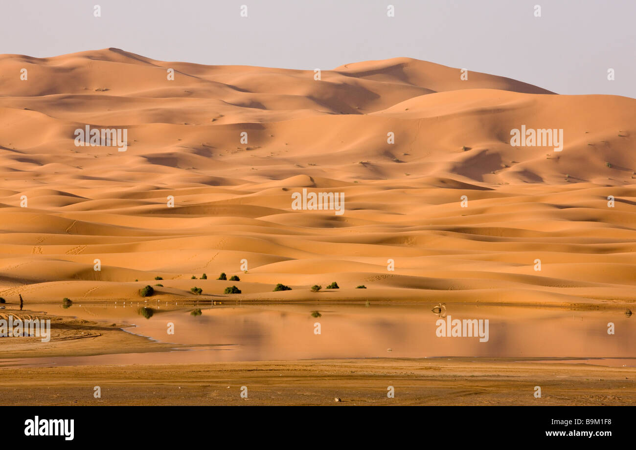 Temporary lake and dunes in the high Erg Chebbi sand dunes Moroccan Sahara Desert after very wet winter spring 2009 - Stock Image
