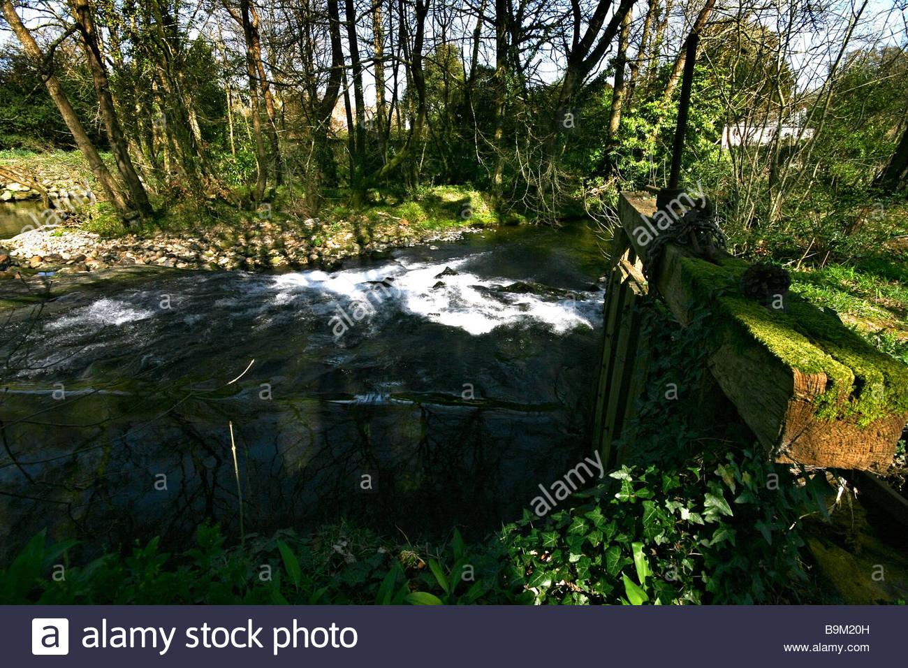 This little weir is on the river Erme in the South Hams area of Devon near an area called lower Keaton. - Stock Image