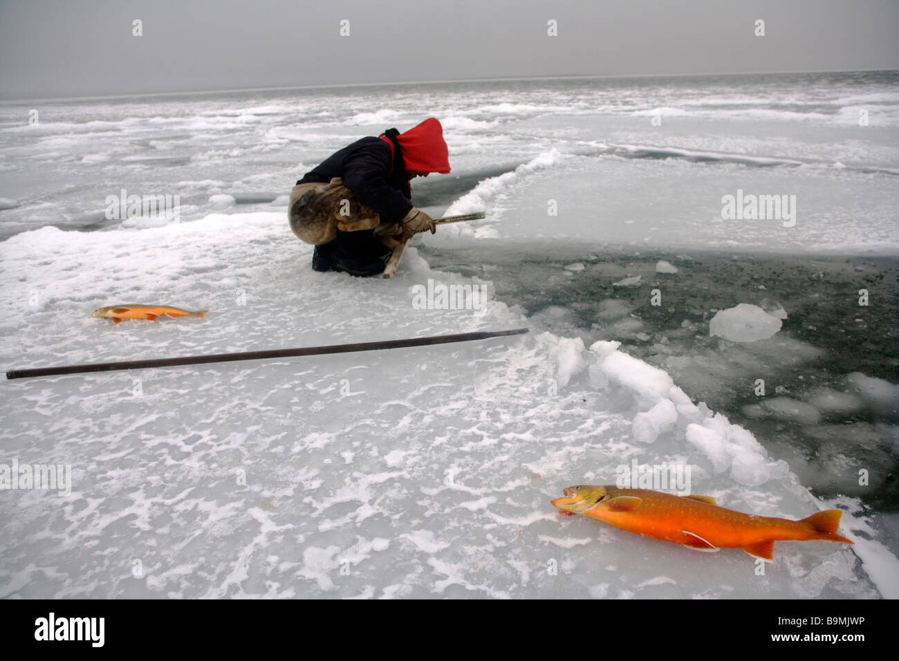 Canadian Ranger fishing for salmon on sea ice, Canadian Arctic, Canada - Stock Image