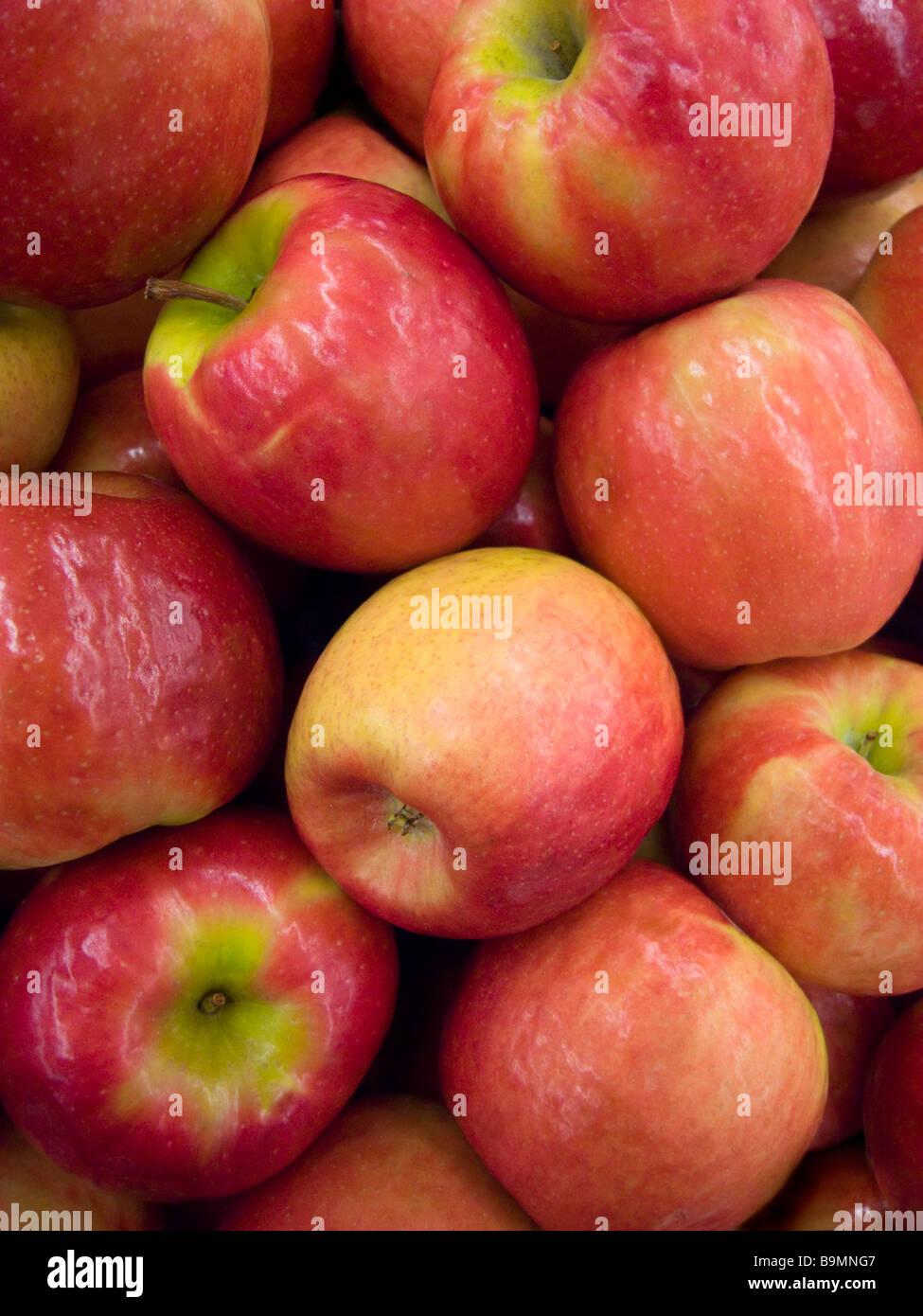 Pile of Braeburn Apples on sale at food market Seattle Washington USA - Stock Image