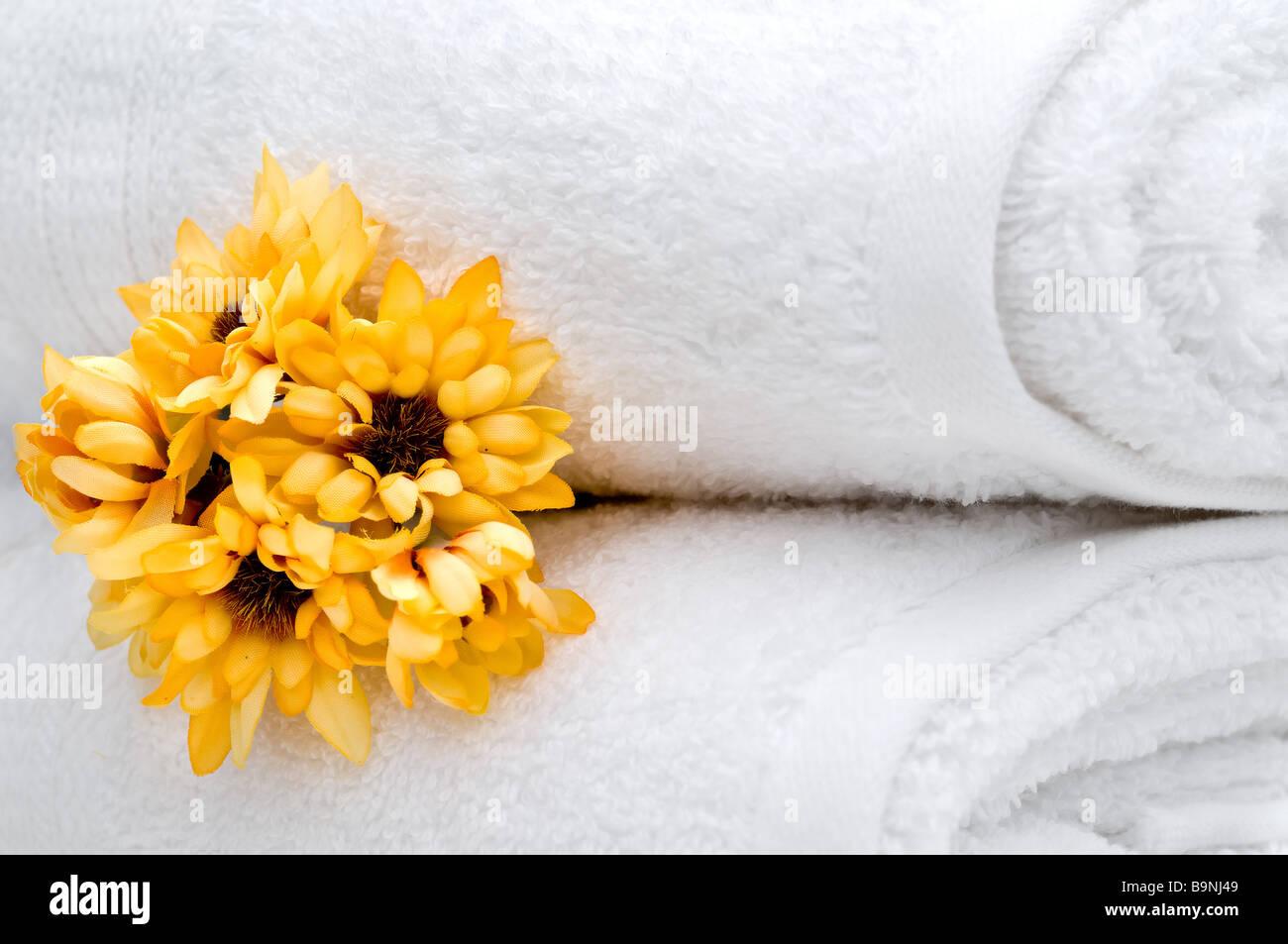 White Fleece Flower Stock Photos White Fleece Flower Stock Images