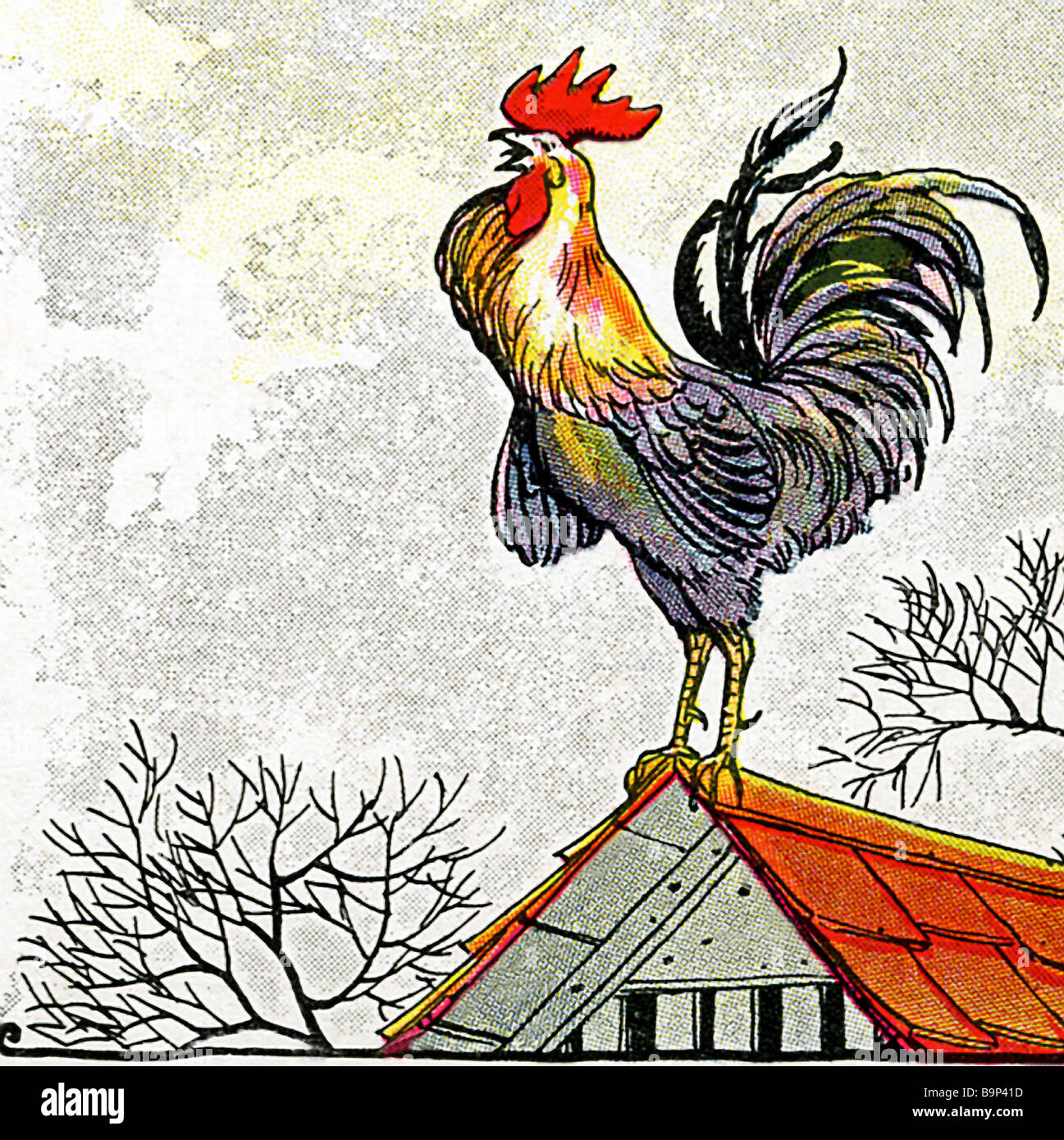 Rooster in Aesop's Fables - Stock Image