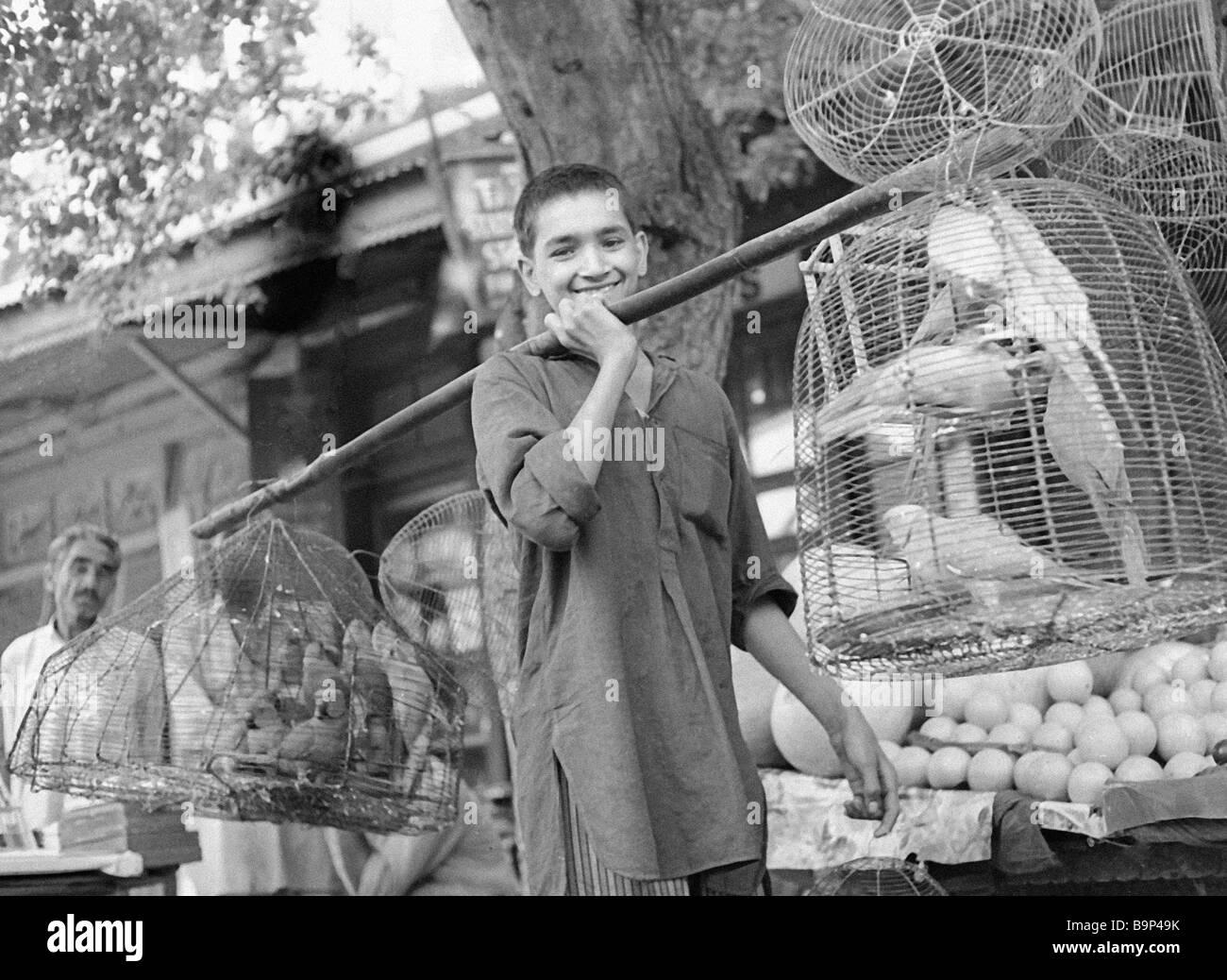 A bird seller in a peshawar market place stock image