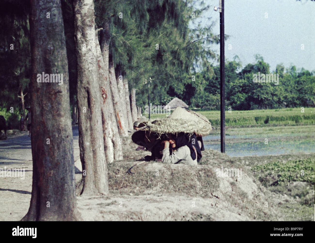 Vietnamese hiding from bullets and splinters under shields made of wicker straw - Stock Image