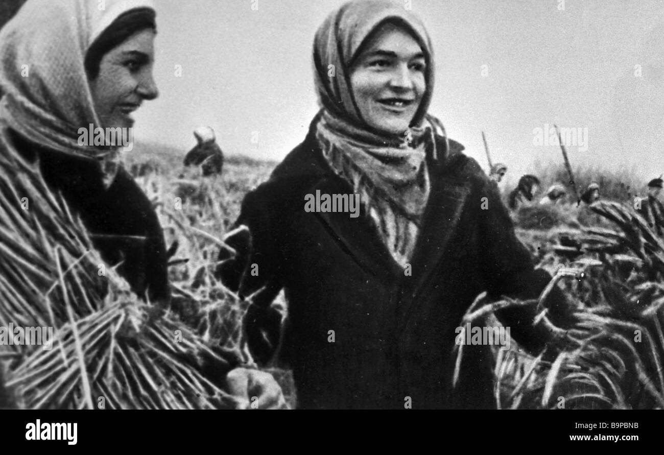 Collective farm women during wartime harvest - Stock Image