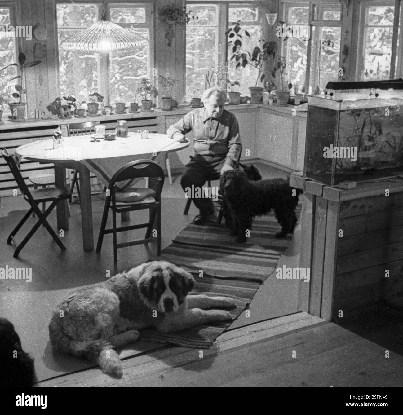 People s Artist of the U S S R Sergei Obraztsov at his dacha - Stock Image