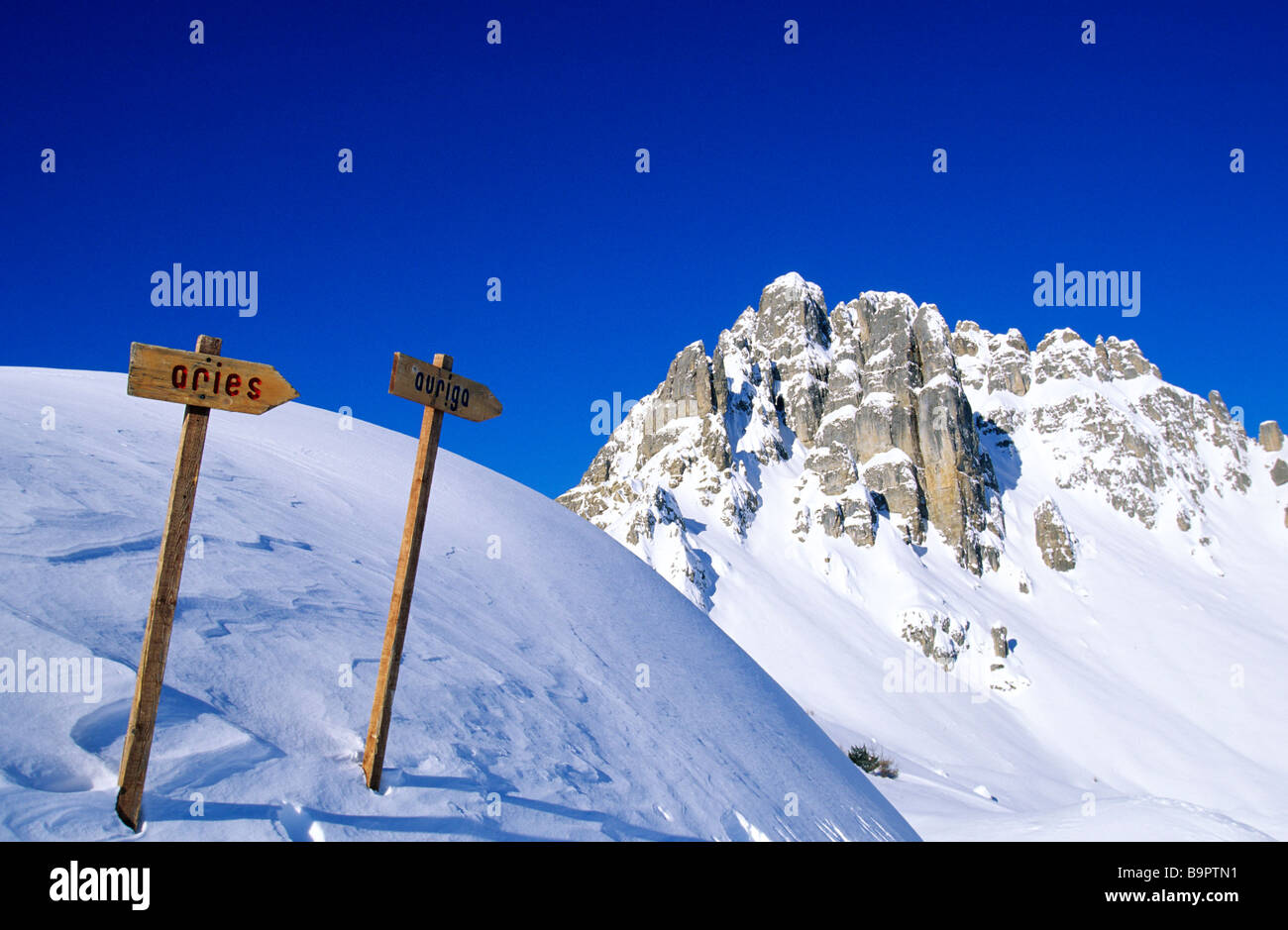reallon stock photos & reallon stock images - alamy