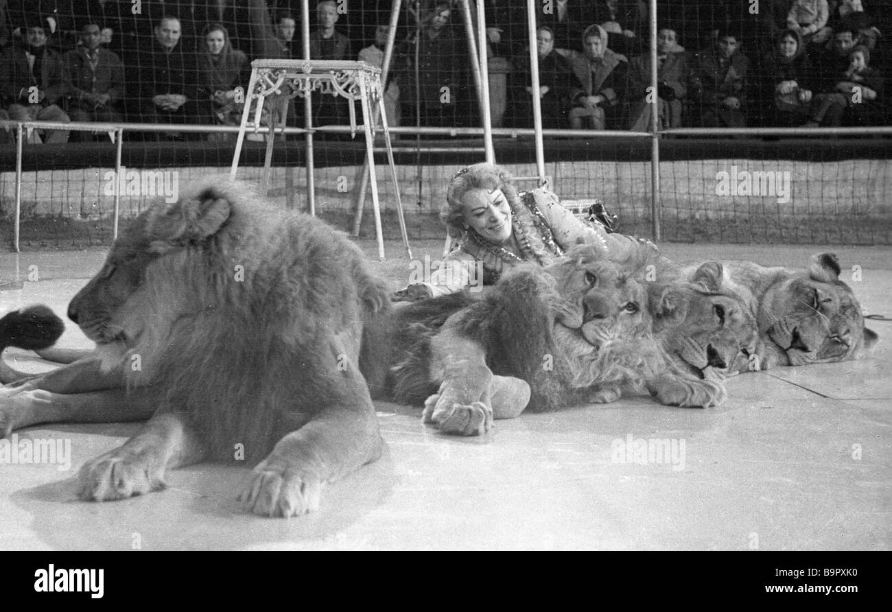 Lion trainer Irina Bugrimova with her charges in the circus arena - Stock Image
