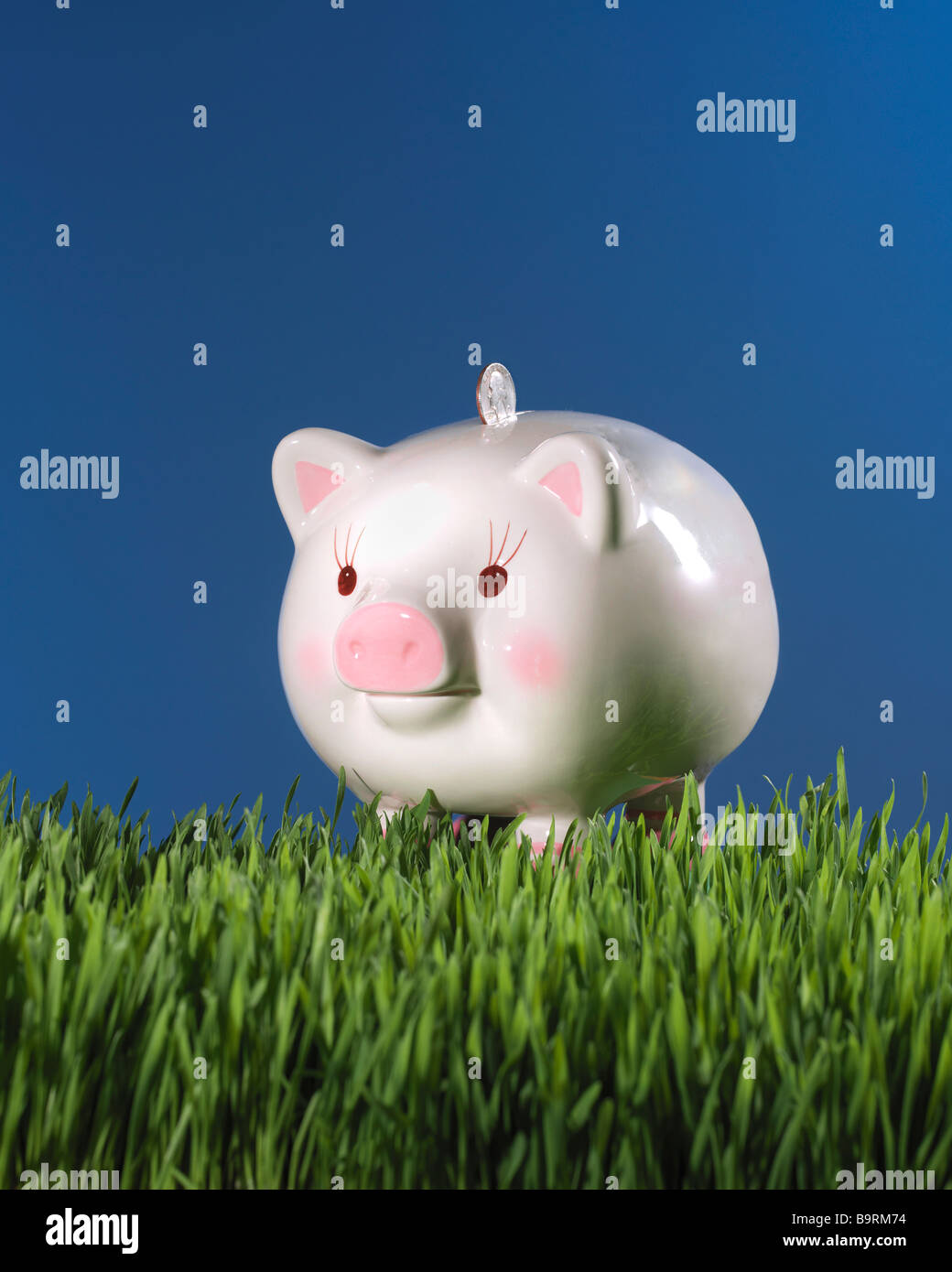 piggy bank in grass with coin money and blue sky Stock Photo