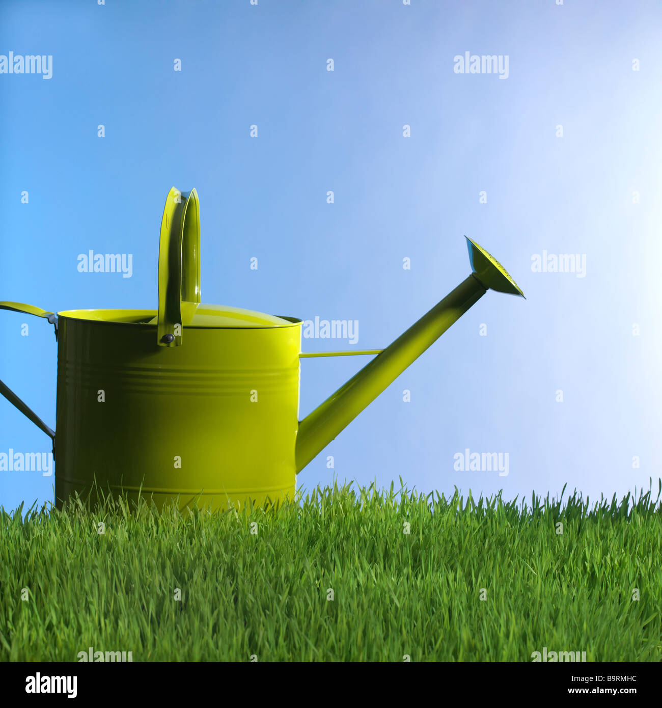 green watering can in grass - Stock Image