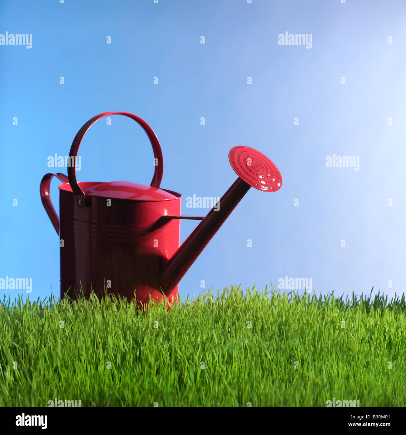 red watering can in grass - Stock Image
