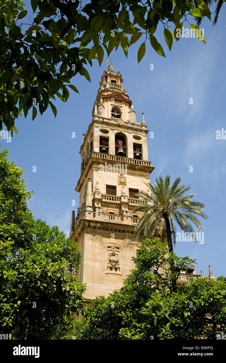 ower Minaret of the Cathedral Mosque and Patio de los Naranjos in Cordoba Andalusia Spain Stock Photo