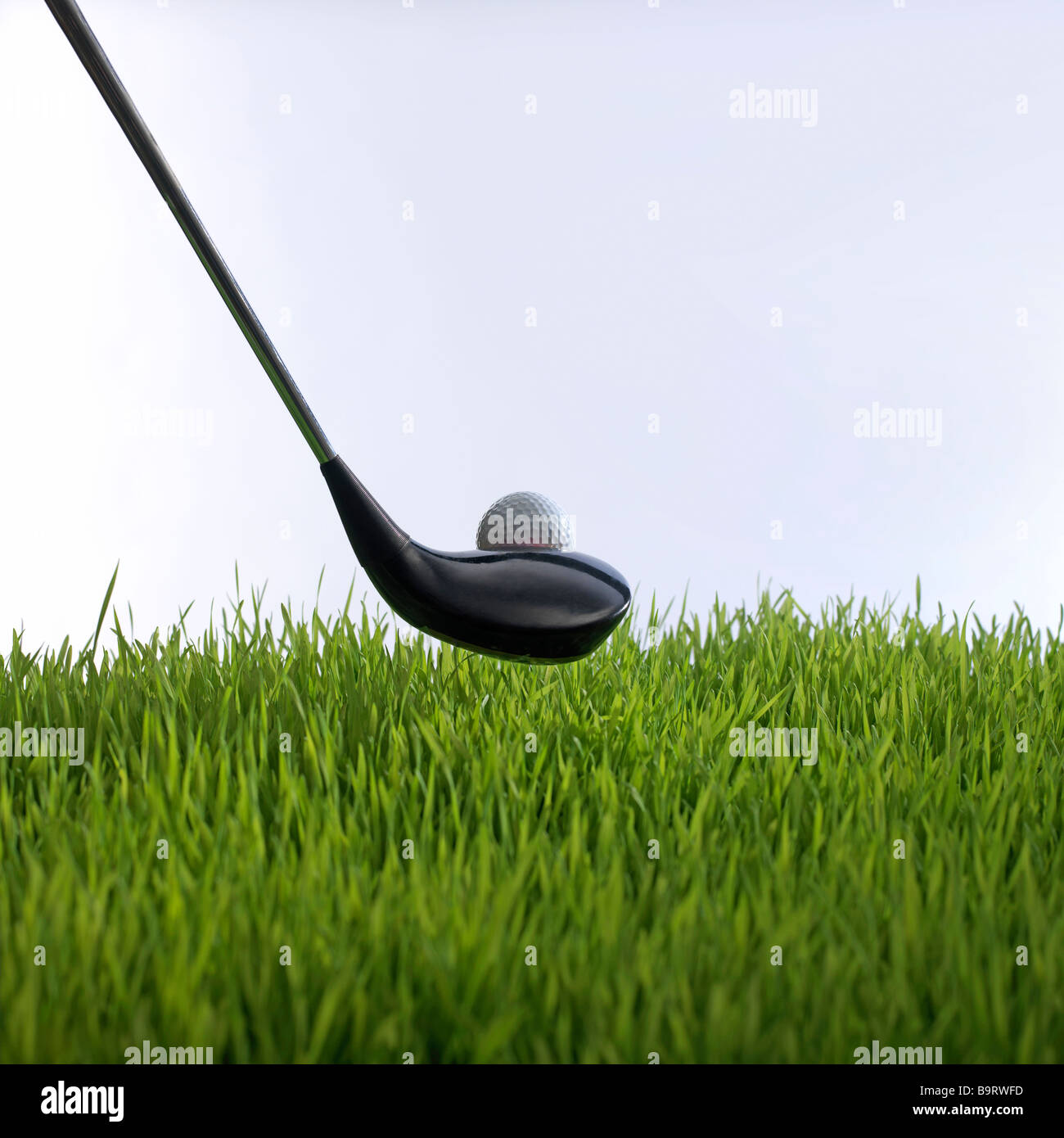 golf club teeing off in grass with golf ball - Stock Image