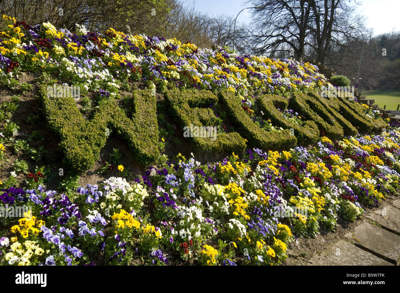 A welcome sign spelt out in plants on a bank of pansies on the approach to Brighton, Sussex. - Stock Image