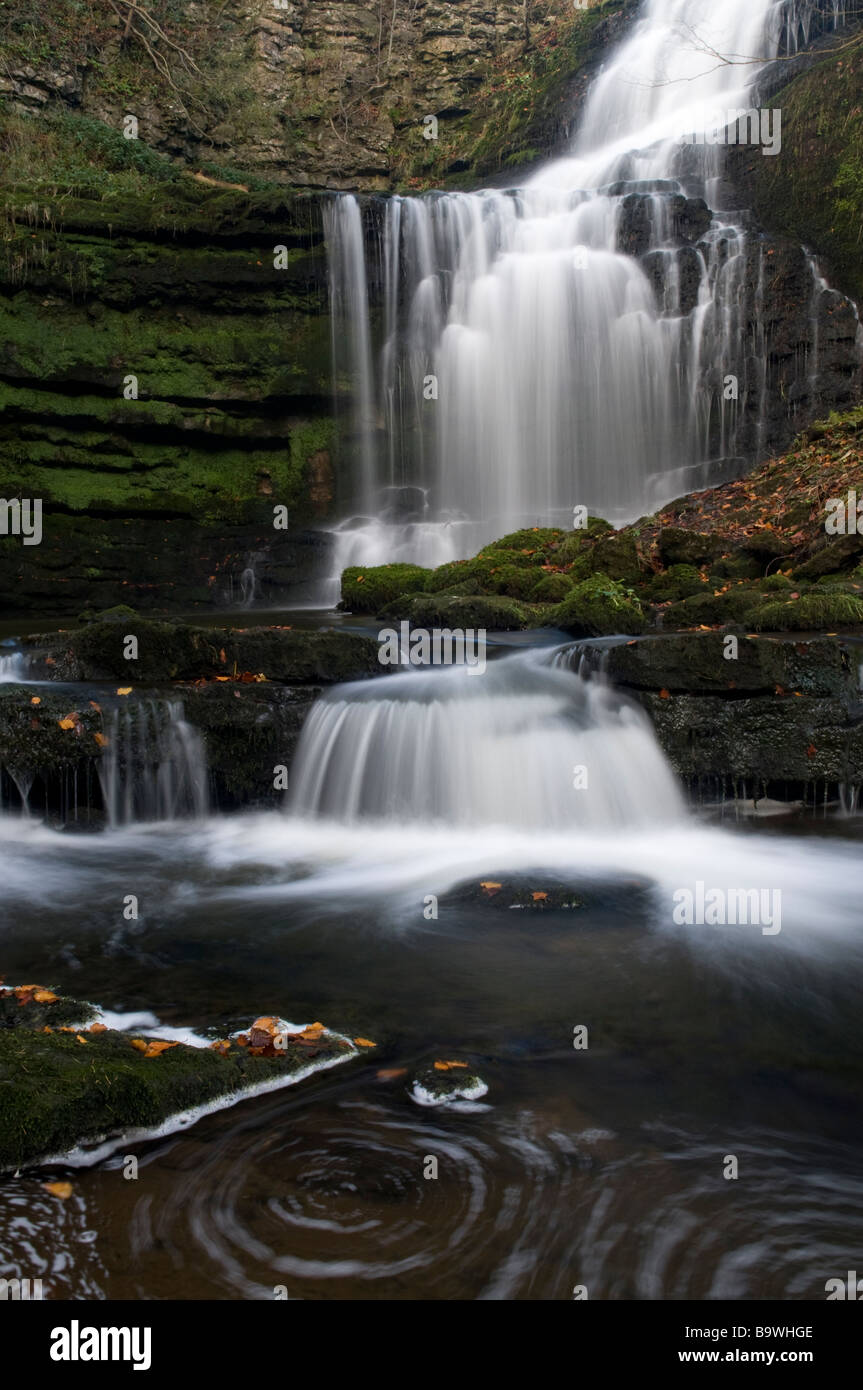 Waterfall detail of a tourist attraction in the Yorkshire Dales, Scaleber Force near Settle, Yorkshire, England, - Stock Image