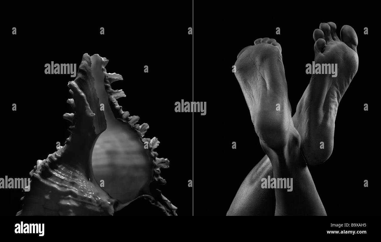 Comparison between a shell and man making the similar shape - Stock Image
