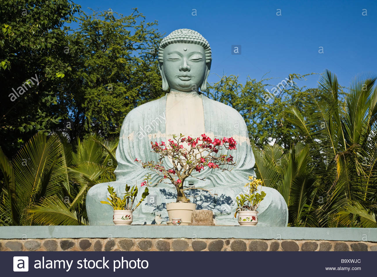 lahaina buddhist personals Giant buddha at lahaina jodo mission, largest buddha outside of japan, maui  sight and sights to see attractions and sights in maui hawaii.
