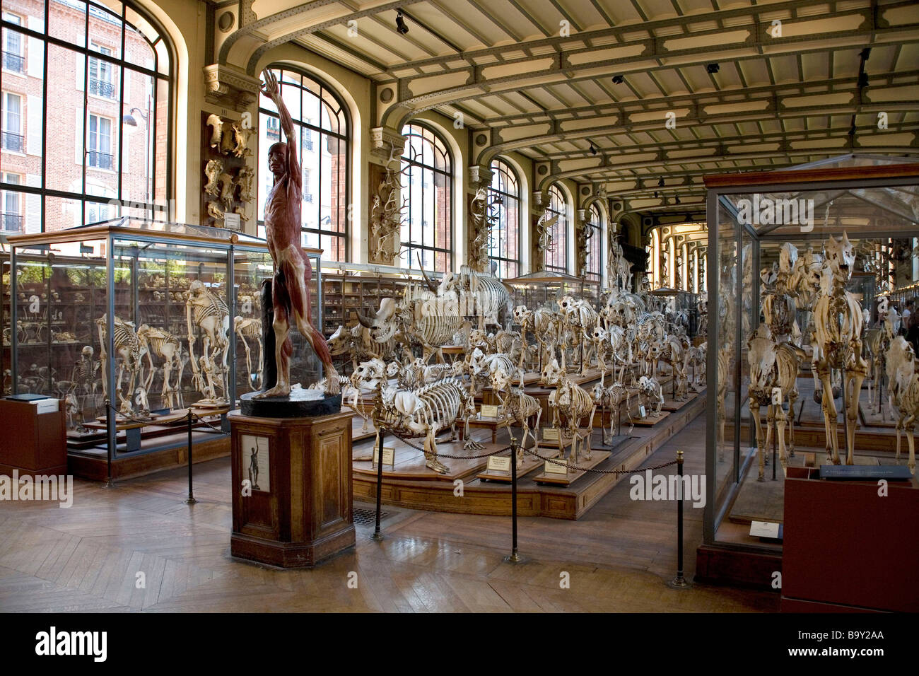 Museum of Natural History in Paris, France - Stock Image