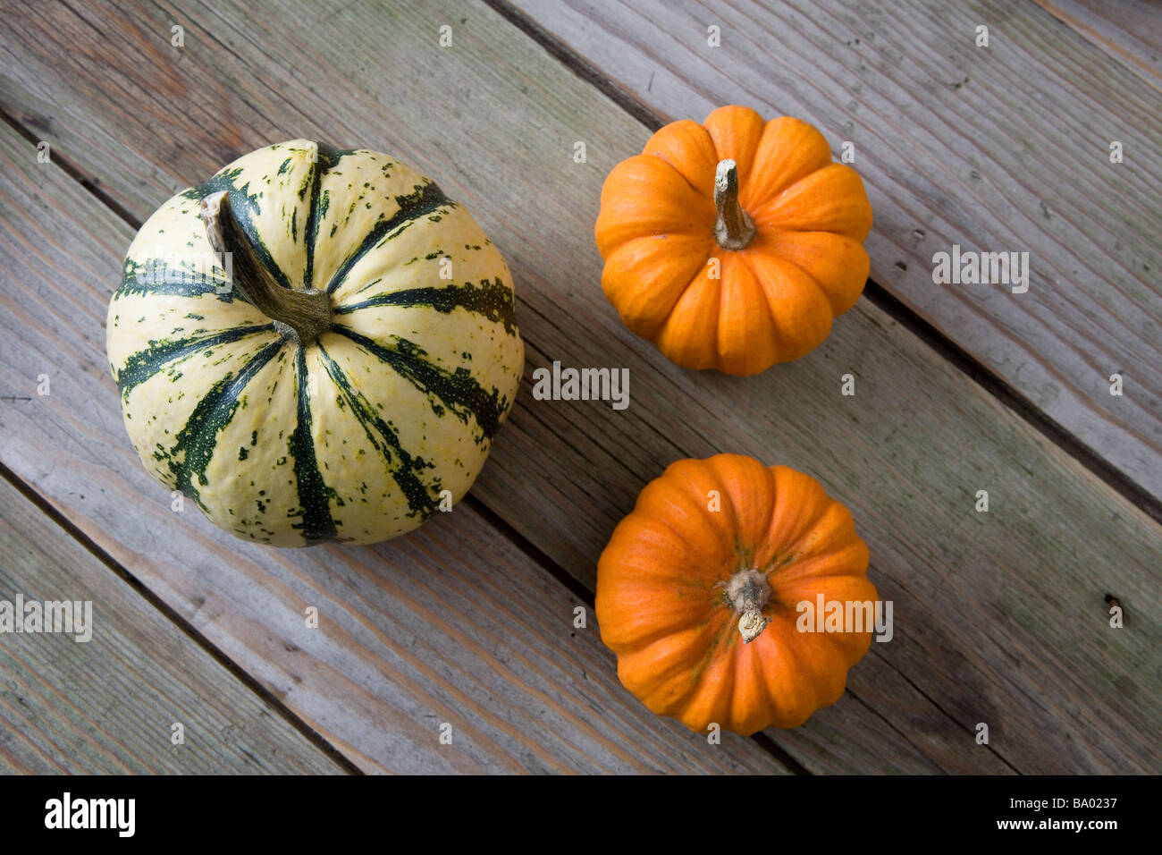 English squashes on wooden table top - Stock Image